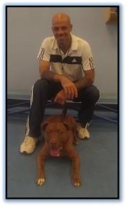 dog trainer phoenix, David Sanders, CPDT-KA, ABCDT