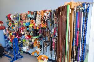 dog training accessories, dog collars, dog leashes, dog food, dog toys