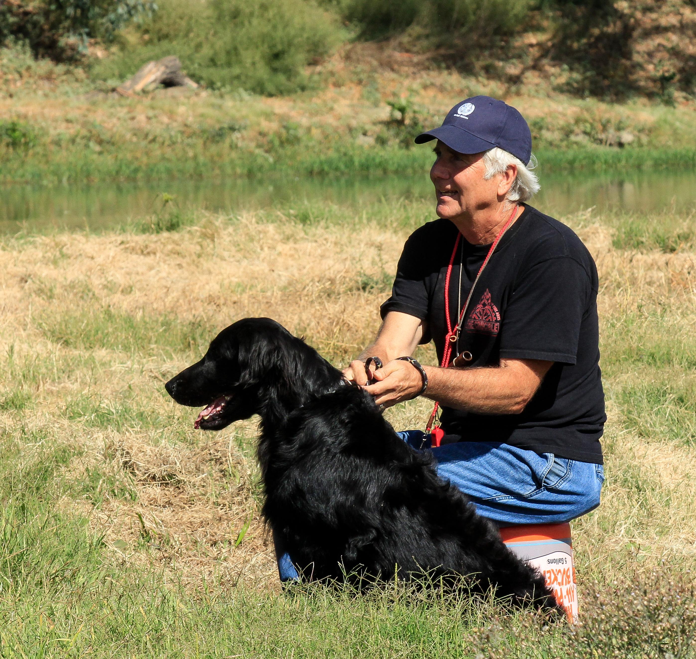 Dog Trainer Phoenix Dog Training School Az Dog Sports
