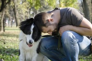 schools for dog trainers