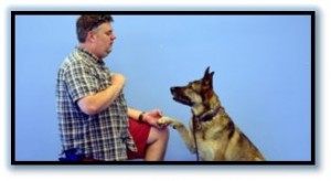 dog trainer phoenix, Will Bruner, AZA, ABMA, AAZK, Animal Trainer, Animal Behaviorist