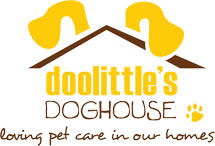Doolittles dog house, pet sitting, az dog sports