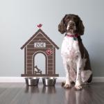 in home dog training, az dog sports, dog training