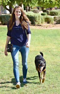 train my dog, az dog sports, dog training phoenix