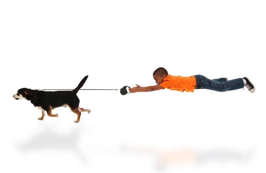 walking your dog, dog training, jessa parker, az dog sports