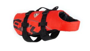 dog lifejacket, az dog sports